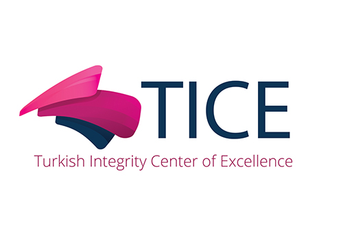 2014 – TICE  Turkish Integrity Center of Excellence